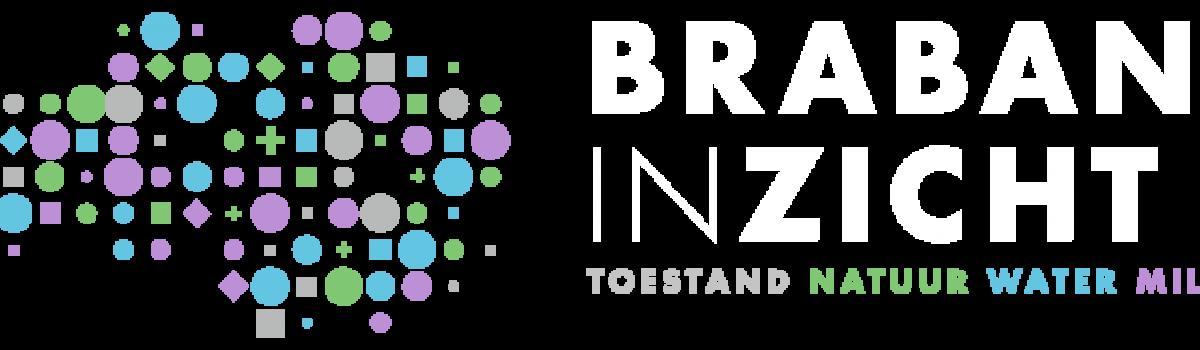 BrabantInzicht